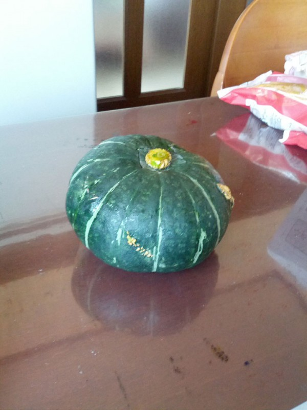 かぼちゃ4-20120731