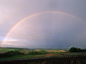 自然界の虹