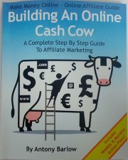 Building An Online Cash Cow - A Complete Step By Step Guide To Affiliate Marketing